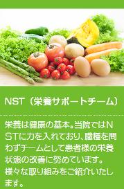 NSTの紹介